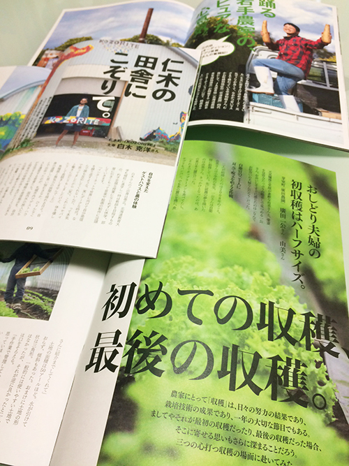 nou_style_shimen.jpg